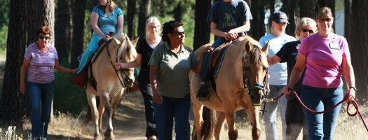 Free Rein Therapeutic Riding Equipping Riders For Life
