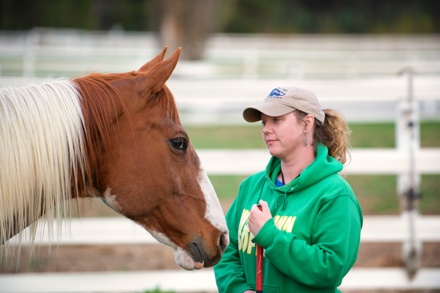 Healing With Horses Gallery Free Rein Therapeutic Riding