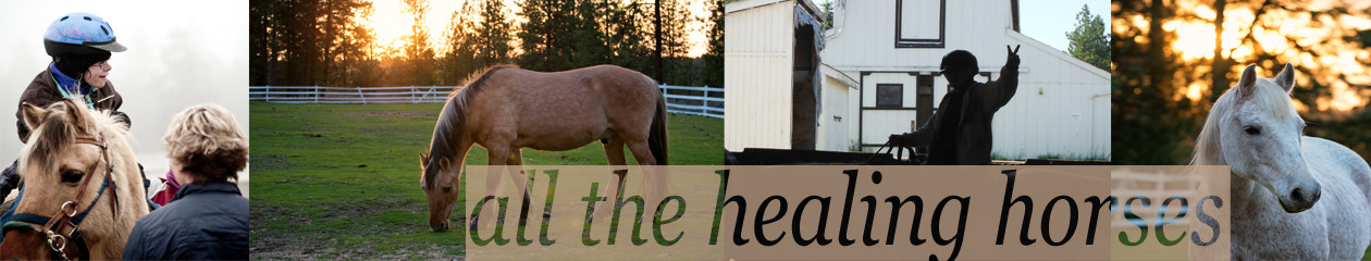 Free Rein Therapeutic Riding